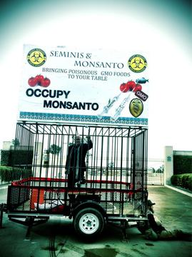 Occupy Monsanto action in Oxnard